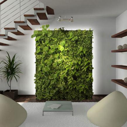 Озеленение квартир и офисов