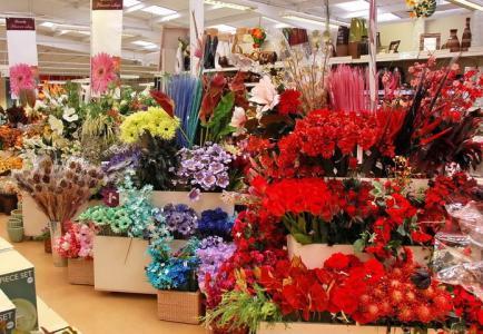 Цветы, которые никогда не завянут