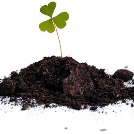 Плодородный грунт для дачи или сада